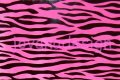 Zebra Black Foil on Pink.png